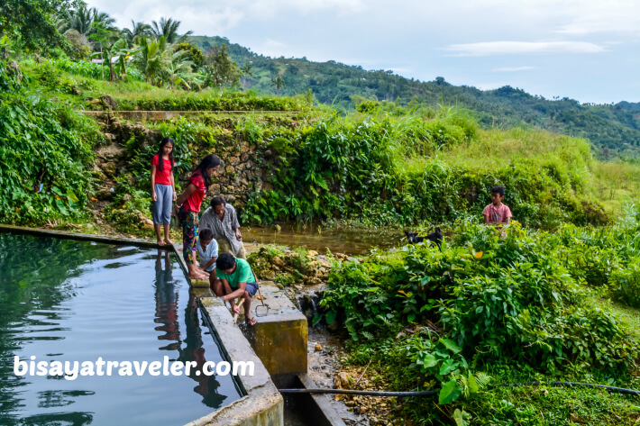 A Solo Visit To Argao's Gorgeous Rice Terraces