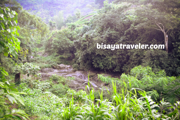 Mount Babag: A Fun-filled Escapade With A Bunch Of New Friends